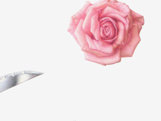 aus 60 SONGS: Rosanna (Toto, 1982) - 2017 - Tusche und Farbstifte auf Papier - 15 x 15 cm - gerahmt, signiert und datiert